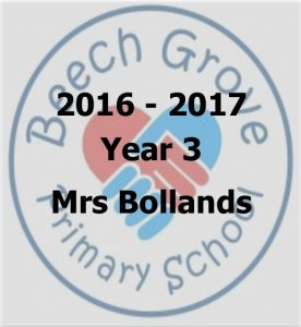 Mrs Bollands - 2016 - 2017_1